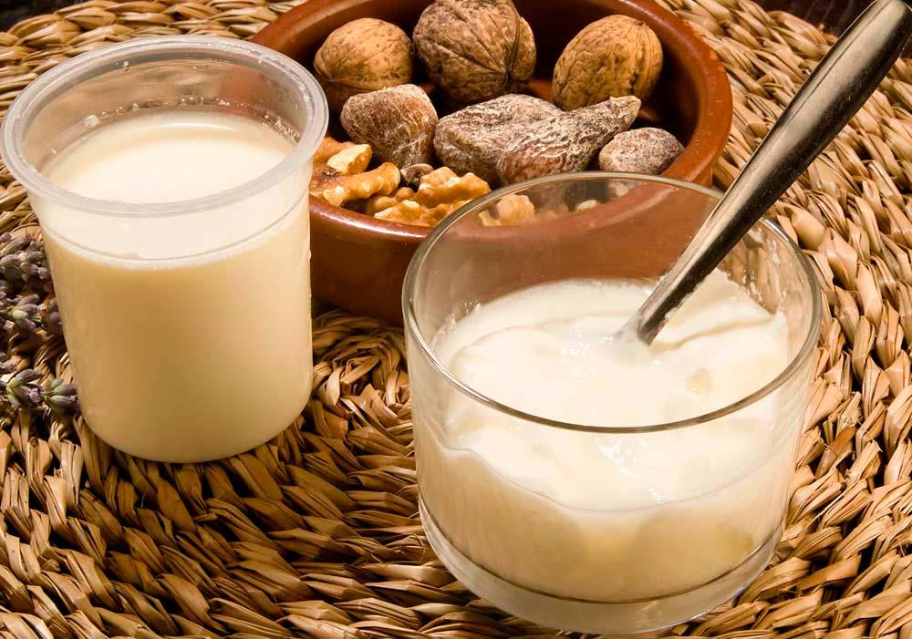 iogurt natural artesà